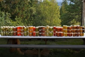 2012canning