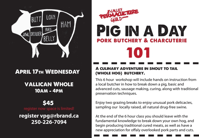 pig in a day workshop